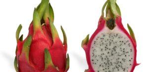 Ejder Meyvesi (Pitaya) Yetiştiriciliği ve Üretimi