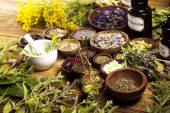 Tıbbi ve Aromatik Bitki Droglarının Sınıflandırılması
