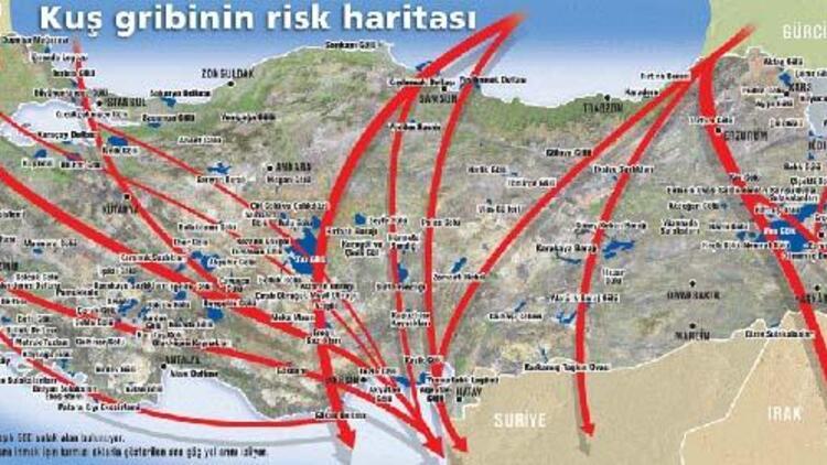 Türkiye-Göçmen-Kuş-Yolları