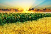 Ekim Nöbeti ve Tarımsal Desteklemeler