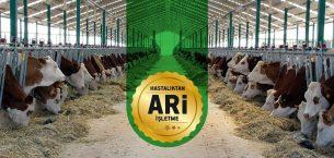Hastalıktan Ari İşletme ve Onaylı Süt Çiftliği