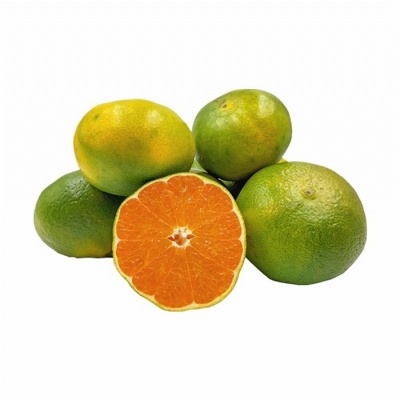 Bodrum mandalinası