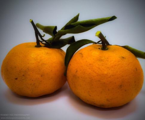 Fortune mandarin