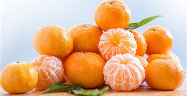 Mandalina / Mandarin Yetiştiriciliği ve Faydaları