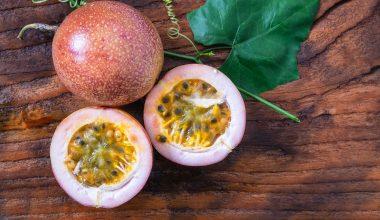 Passiflora / Çarkıfelek Yetiştiriciliği Ve  Faydaları