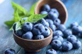 Maviyemiş / Blueberry Yetiştiriciliği Ve Kullanım Alanları